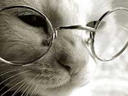 Ya no necesito gafas
